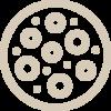 papiloame-filiforme